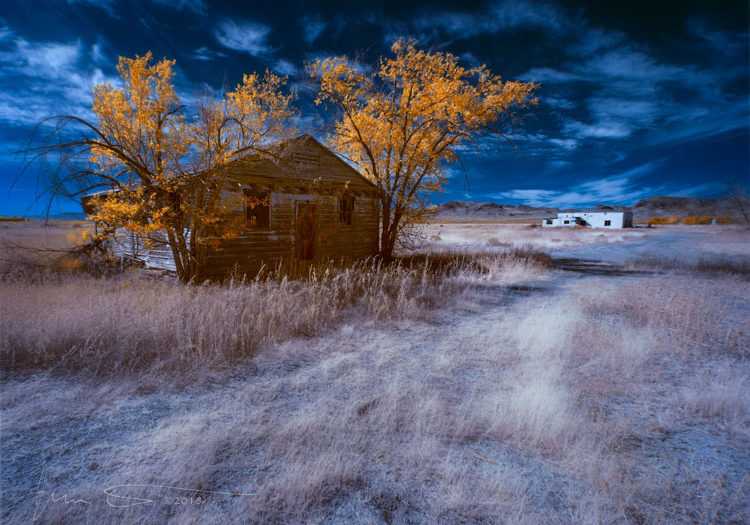 Autumn-of-Days-Infrared_by_Jim_Peterson